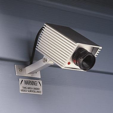 Cámaras de Seguridad Falsas 1